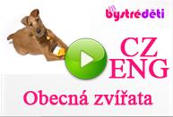 CZ-ENG_Obecná zvířata