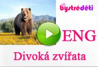 ENG_Divoká zvířata